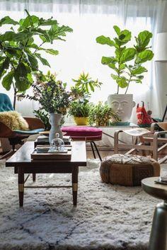 14 Rooms Where Fiddle Leaf Figs Shine
