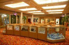 Tiendas - barco Sovereign