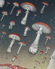 Shrooms. ________________________________ #trippy #stonernation #potheadsociety #drugs #420friendly #lsd #shrooms #hippylife #hippielife #enlightened #awakened #pinealgland #thirdeye #dmt #psychedelicart #psychedelia #psychedelics #acid #acidtrip #acidart #trippyshit #psyart #magicmushrooms #psilocybin #ayahuasca #psychedelicsociety #psicodelia #psicodelico #sacredgeometry
