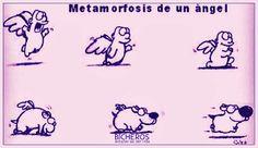 Metamorfosis de un ange