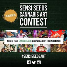 Don't forget to check out this awesome art competition hosted by @sensiseedbank ! Find out more here: http://dronke.rs/sensiseedsart #SensiSeedsArt #SponsoredPost