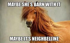 Barn with it - I can't help but find this hilarious.