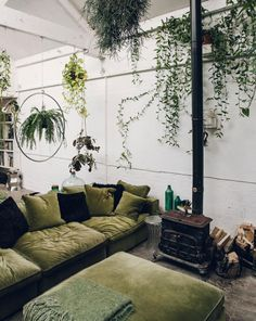 studio with green velvet sofa and hanging plants. / sfgirlbybay