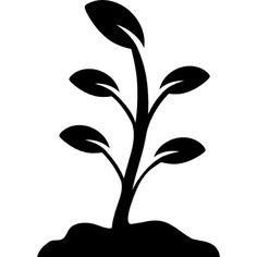 plant-growing_318-41723.jpg (626×626)