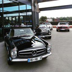 Mercedes-Benz Pagodas at #SchuppenEins ...