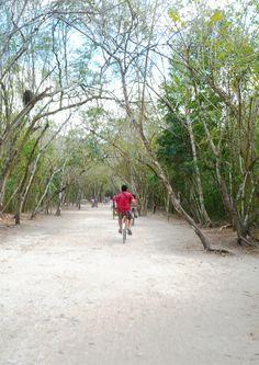 Recorriendo los caminos de Coba disfrutando la selva y la cultura maya.