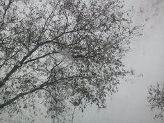 Dia d'abril plujós