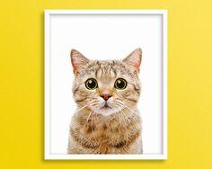 Cat Domestic Cat Kitty Kitten Print Cat Print Cat Art Cat by Blckd