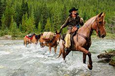 Horseback in Banff National Park, Alberta, #Canada