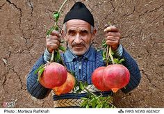 Persian Villager showing his bountiful pomegranate harvest. #irantravelingcenter