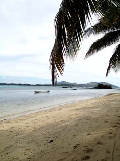 Die dritte Insel Fiji, Travel Pictures, Beach, Water, Outdoor, Small Bungalow, Small Island, Snorkeling, Destinations