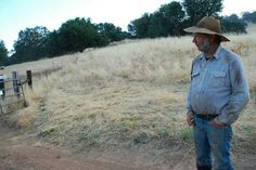 BYLT is proud to offer Jim Gates' Nevada County Free Range Beef during their biggest fundraiser of the year this weekend. Jim's cattle are raised in part on BYLT's Garden Bar Preserve. Learn more at www.bylt.org/news/