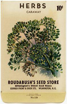 Seed Packet Herbs