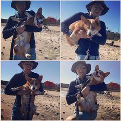 Santa Cruz CA: Me and daddy boogy-ing at the beach today!!!  #EmeryTheCorgi by dashthecorgi