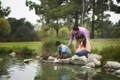 Landscaping Ideas for Around a Large Pond ::  Visit us at outdoorwatersolutions.com for a variety of products for your pond of lake.