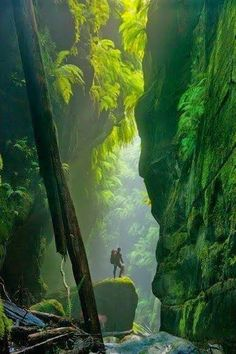 Beautiful Mountains - Blue Mountains- Australia