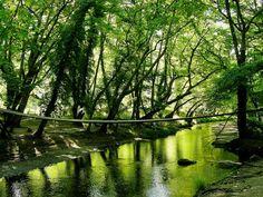 Mantoudi, Evia island - Pixdaus Places To Travel, Greece, Beautiful Places, Island, Nature, Greece Country, Naturaleza, Destinations, Holiday Destinations