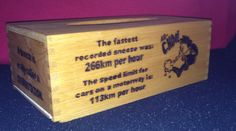 Tissue Box with wood burnt sneeze facts.
