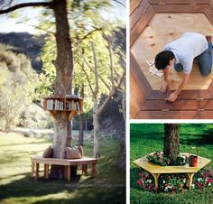 Top 3 outdoor projects to work on this summer: I would love to have a tree bench in my yard!