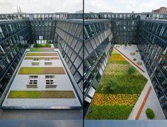 internal courtyards design / Rheinpark-Metropole