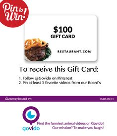 We are so excited to announce our first giveaway at Govido!  @govido is a fun site that features the funniest animal videos.  Our mission? To make you laugh!  Two easy steps to enter in the giveaway: 1. Follow @Govido on Pinterest 2. Pin at least 3 favorite videos from our Board's. One lucky person will be chosen on September 15, 2014 to receive a $100 restaurants.com gift card!  What are you waiting for?! Get govido! #watchgovido Funny Animal Videos, Funny Animals, Winner Winner, Summer Of Love, Giveaway, Trips, How To Make Money, At Least, Waiting