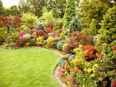 Flower Garden Wallpaper tall pink perennial flowers | perennial flower wallpapers