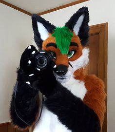 Hey @BartonTheFox, one more picture! #FursuitFriday