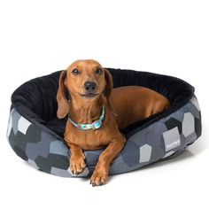 FuzzYard modernista reversible pet bed for dogs in grey Pet Beds, Timeless Design, Your Dog, Dog Cat, Pets, Grey, Animals And Pets, Ash, Gray