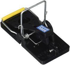A good mouse trap should be easy to set-up and remove. We researched the best mouse traps to help you manage and eliminate your unwanted rodent pests. Best Mouse Trap, Mouse Traps, Best Pest Control, Bug Control, Catching Mice, Getting Rid Of Rats, Bees And Wasps, Pest Management, 6 Pack