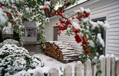 Exterior view of side of Roscow Cole Kitchen in snow.  Woodpile next to kitchen, and branch of pyracantha in foreground.