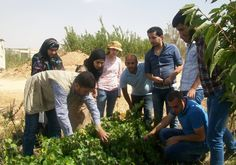 تأهيل مجموعة من طلاب كلية الزراعة-الجامعة اللبنانية في البقاع Training a group of students of the Faculty of Agriculture - Lebanese University in Bekaa. #jihad_al_binaa