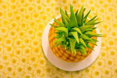 Pineapple Party...
