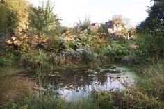 piet oudolf landscape with pond and woody shrubs via Gardenista