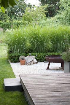hoge grassen, gras, kiezel, houten deck - Garten & Gemüseanbau mit Kindern - Home Wooden Terrace, Wooden Decks, Garden Types, Back Gardens, Outdoor Gardens, Unique Garden, Bamboo Garden Ideas, Garden Modern, Contemporary Garden