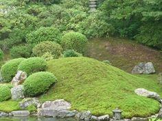 japanischer Garten Koi Bonsai Stein-Garten Jahreszeiten Fliesenverlegung Teehaus Moos Baumgestaltung Teichbau die schönsten Gärten Kyotos