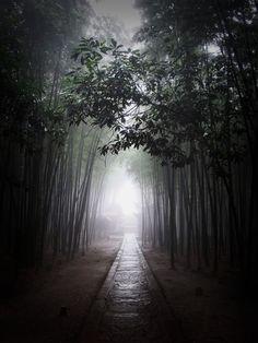 Parque Nacional de Shunan Zhuhai, China