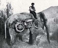 An Indian on an elephant. I never thought I'd see that.