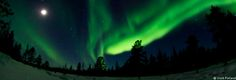 #skiing holidays in #lapland, #northern #lights, Aurora Boreali, skiing in sweden, finland, norway