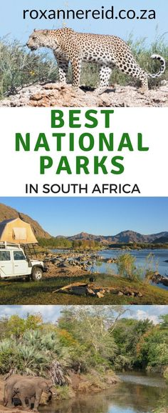 5 of the best national parks in SouthAfrica and why you should visit  #nationalparks #travel #safari #wildlife