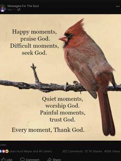 Cardinal bird quotes dads 55 new Ideas Religious Quotes, Spiritual Quotes, Bird Quotes, Bird Sayings, Soli Deo Gloria, Cardinal Birds, Red Cardinal Meaning, Worship God, Thing 1