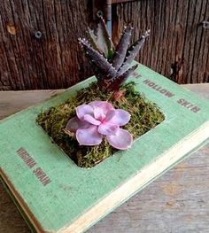 Upcycled Hardcover Book Planter, No. 12