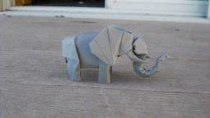 Elephant-Trollip | Flickr - Photo Sharing!
