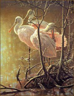 [LRS Animals In Art] Robert Bateman, Mangrove Morning