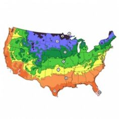 Your garden's success is, in large part, based on planting suitable crops for your climate. Here, we'll focus on Zone 5 plantings. Some major US cities that fall in USDA Zone 5 are Chicago, Illinois, Cleveland, Ohio, Detroit, Michigan, Minneapolis,...