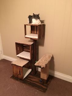 New How to Build A Cat Scratching tower