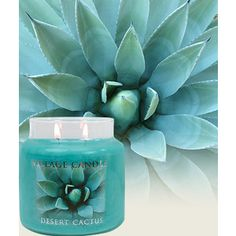 duck egg blue yankee candle - Google Search