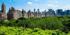 New Yorks Skyline vom Dach des Metropolitan Museums gesehen © Susanne Zöhrer