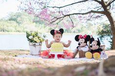 Inspiração: Smash the Cake ao ar livre do Mickey e da Minnie