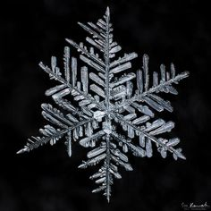 How to Photograph Snowflakes-4.jpg