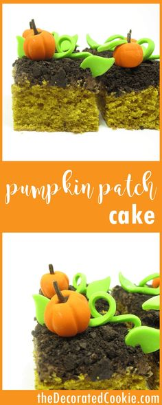 pumpkin patch cake -